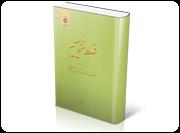 غلط ننویسیم: فرهنگ دشواریهای زبان فارسی