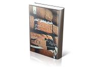 باستان شناسی ایلام