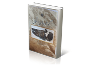 گور خمره های اشکانی: پیوست مجله باستان شناسی و تاریخ